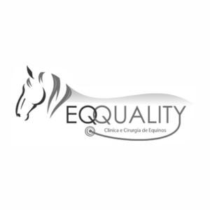 Eqquality – Especializados em Equinos